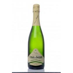 Crémant de Bourgogne Blanc de Blanc Cave de Bissey - HISTOIRES D'APERO
